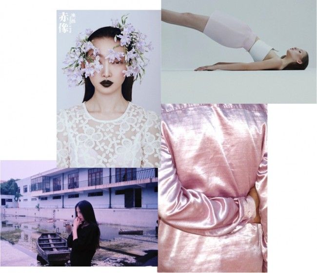 Blue & Pink Colour Theory